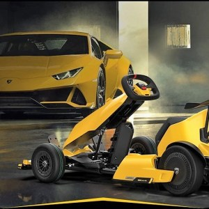 Ninebot Electric Lamborghini Go-Kart Pro
