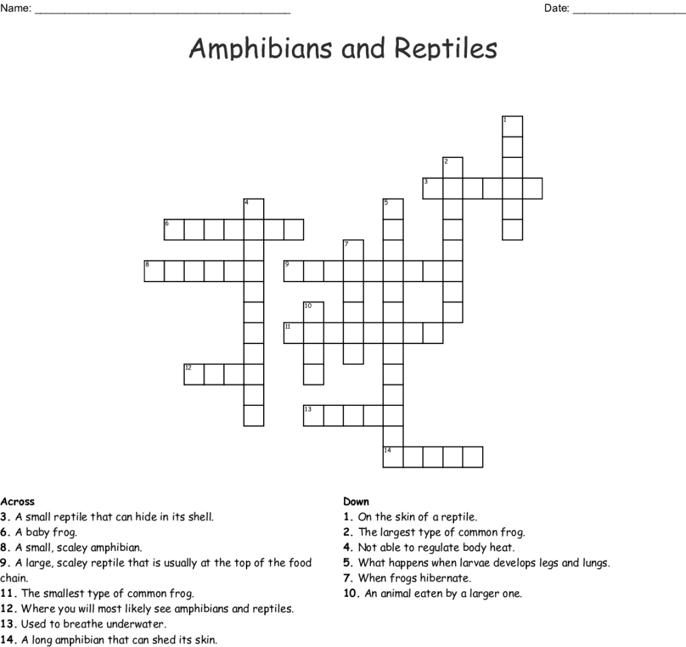 medium resolution of amphibians and reptiles crossword
