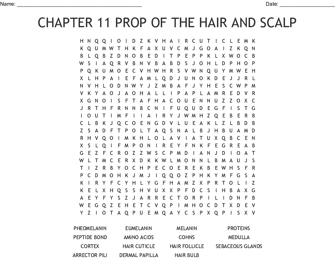 Hairdressing Word Search