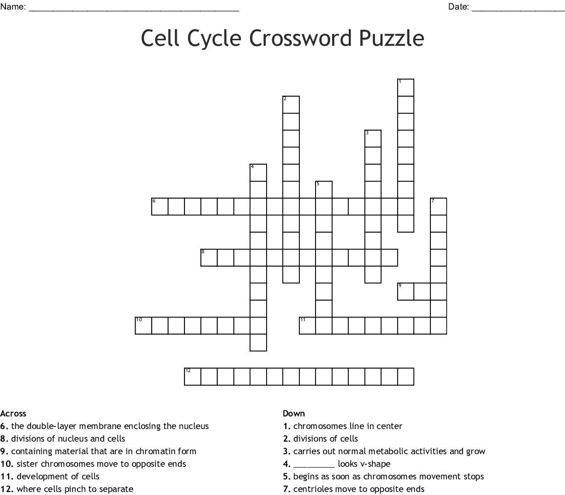 Cell Cycle Crossword Puzzle