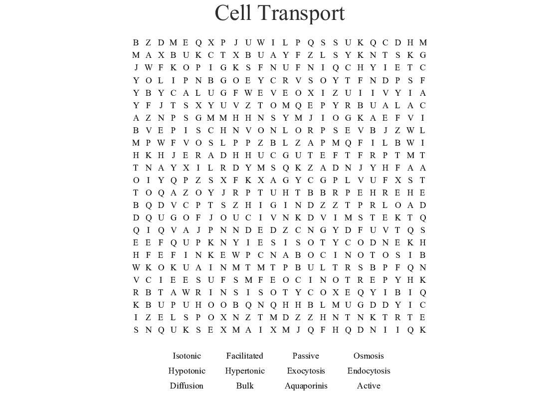 Homeostasis And Cell Transport Worksheet Answers