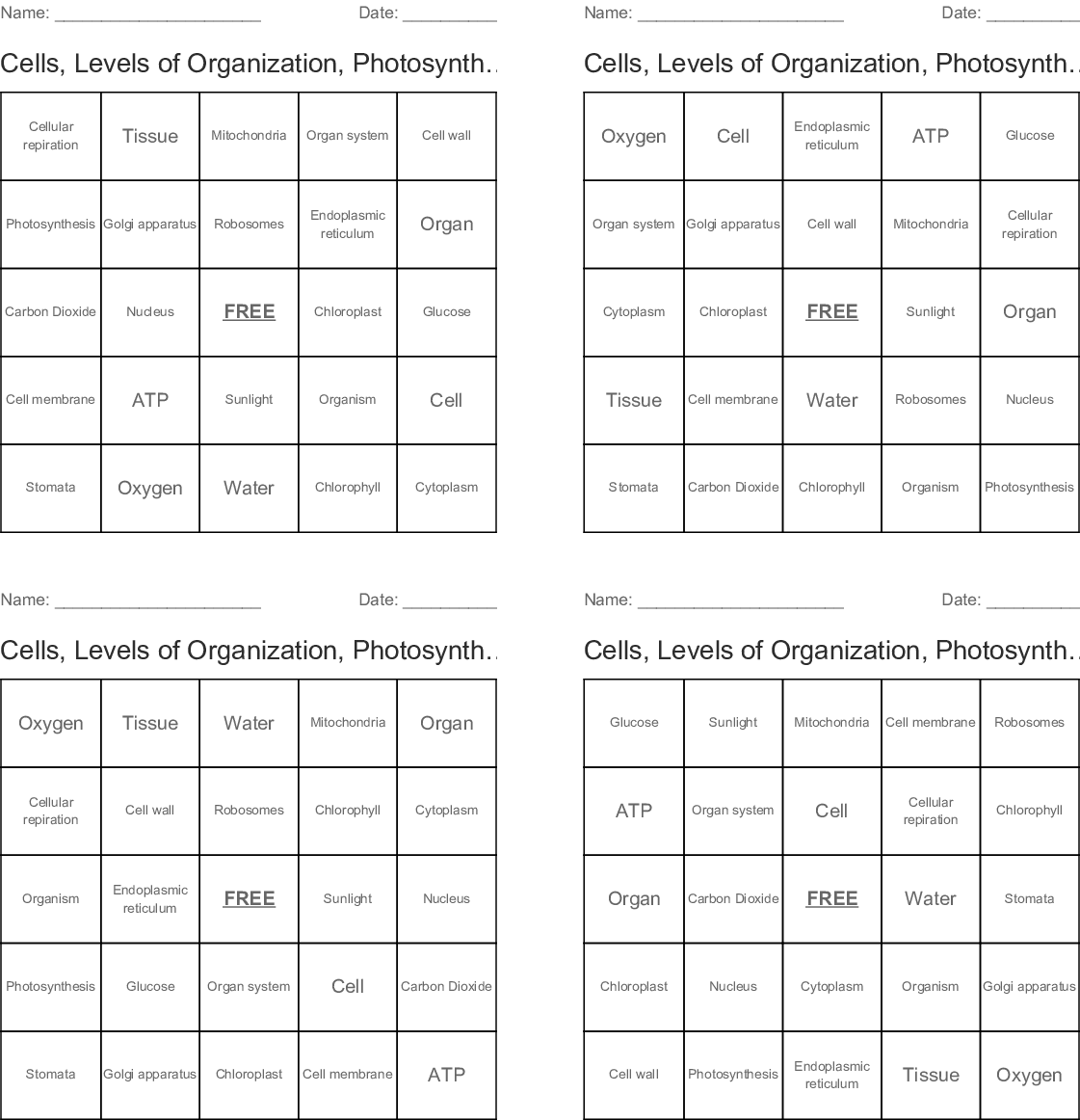 Cells Levels Of Organization Photosynthesis Amp Cellular