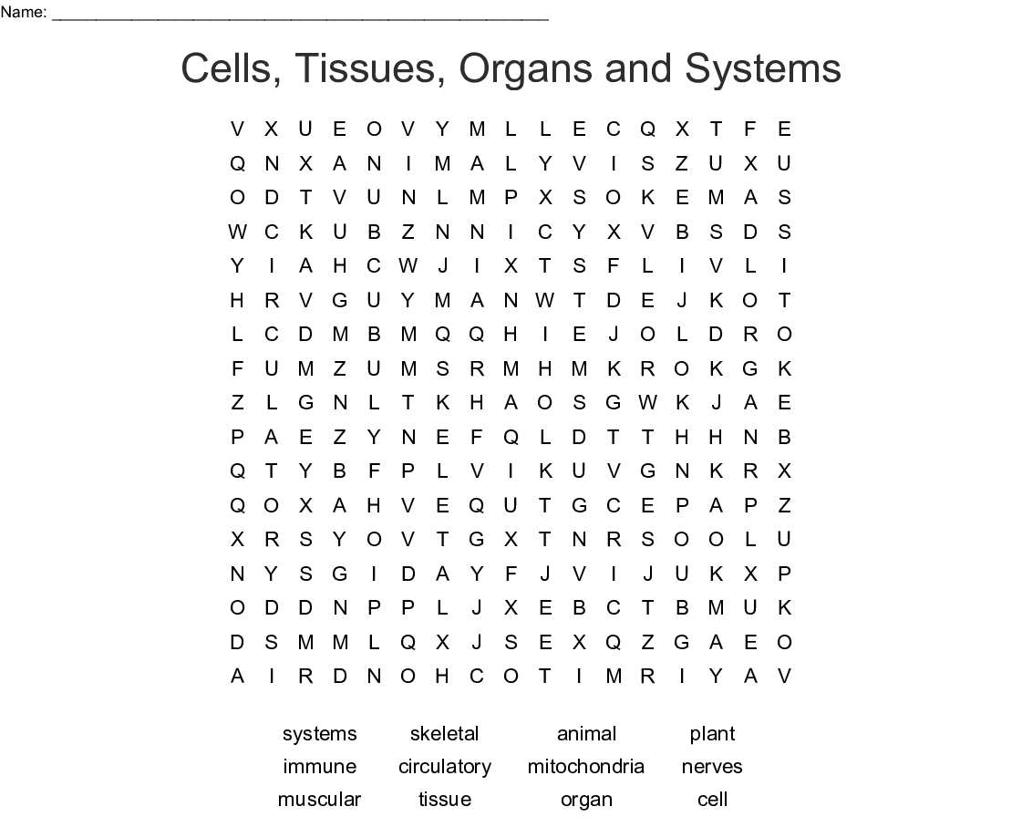 Cells Tissues Organs And Systems Word Search