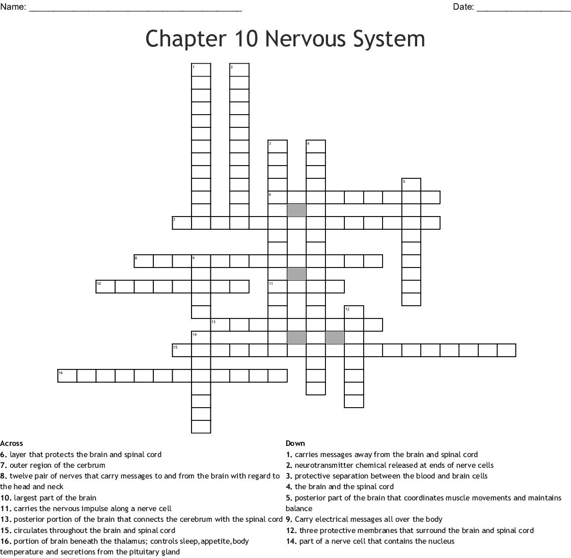 Chapter 10 Nervous System Crossword