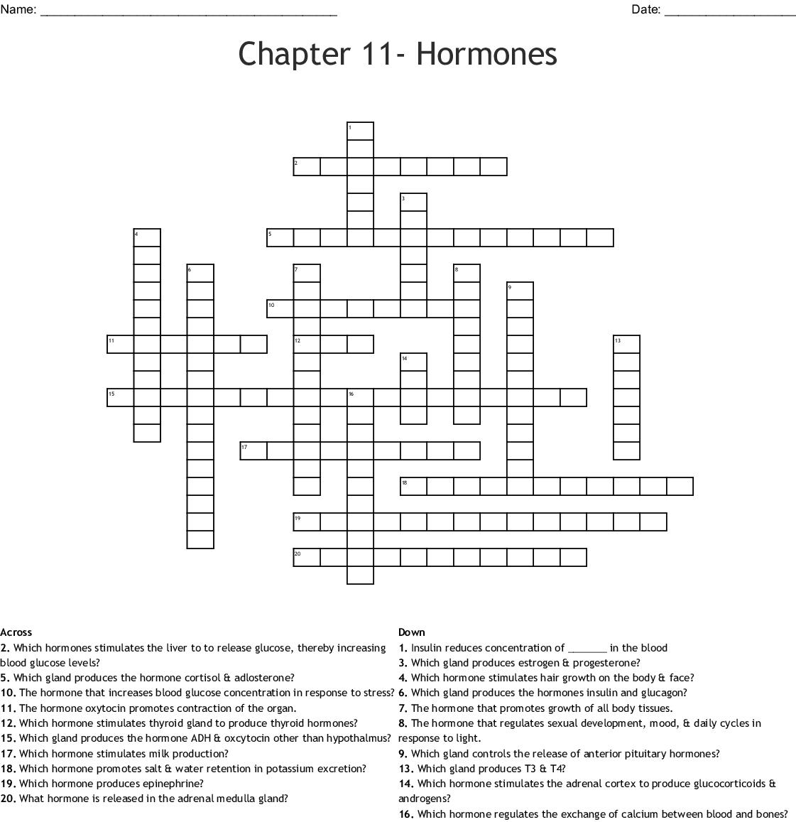 Answer Key Body Systems Matching Worksheet Answers