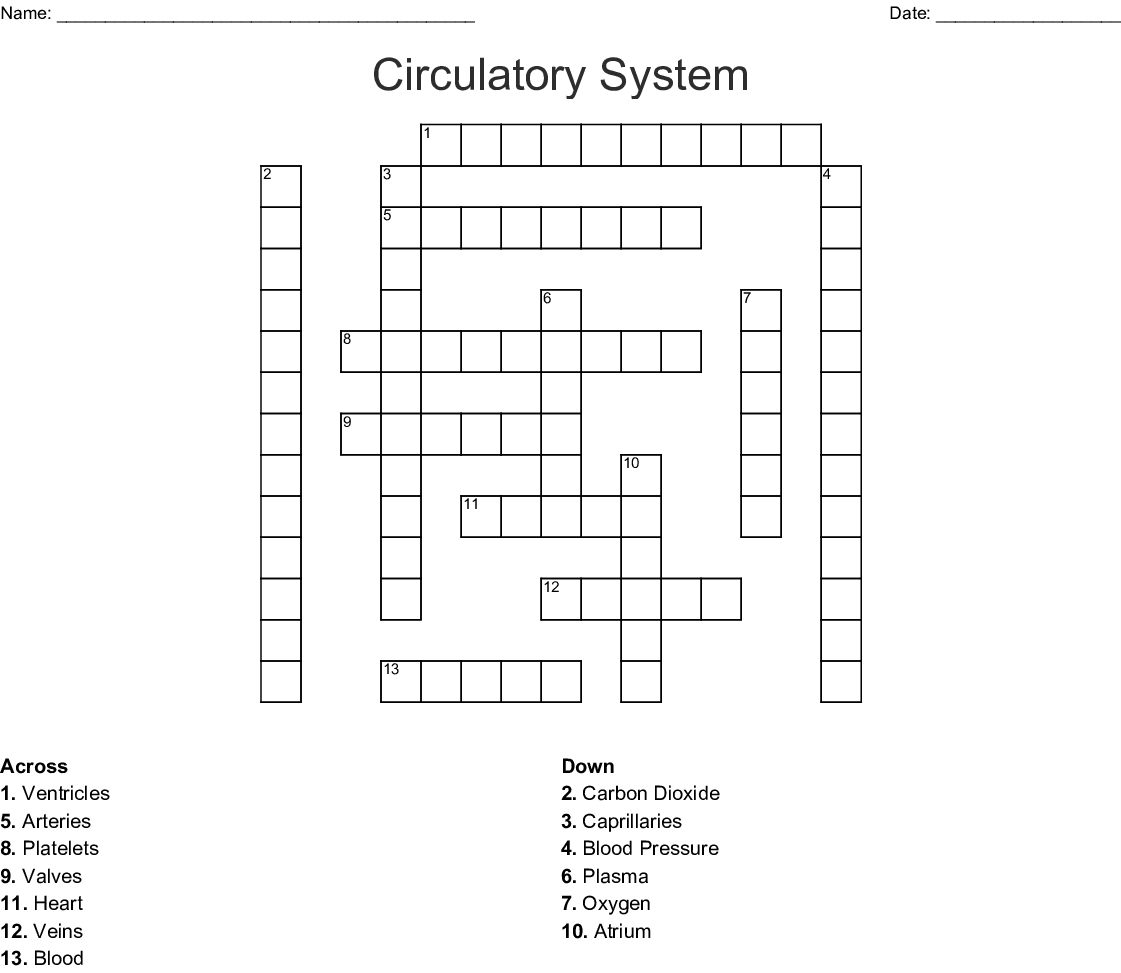 Heart Amp Circulatory System Word Search