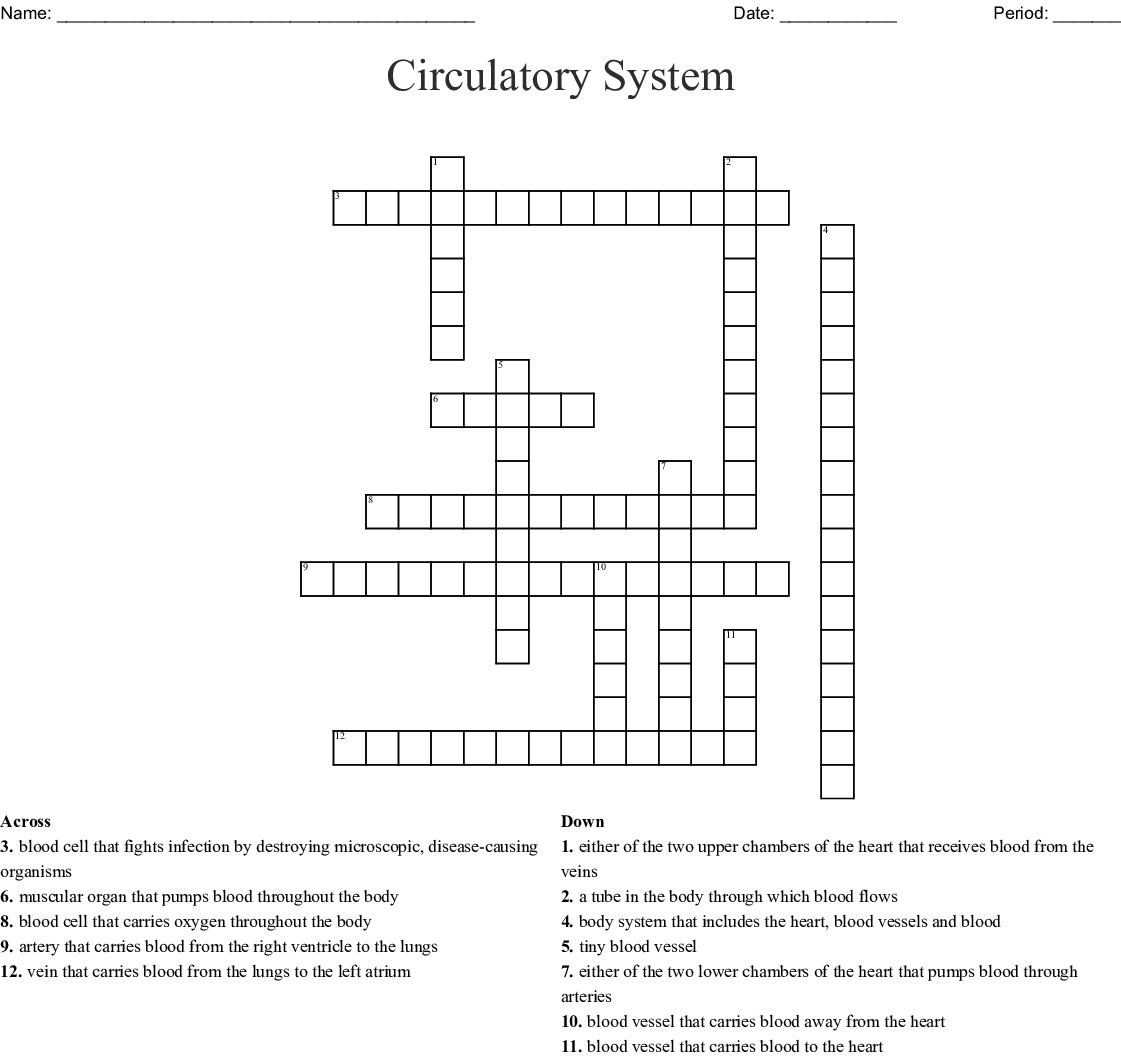 Circulatory System Crossword