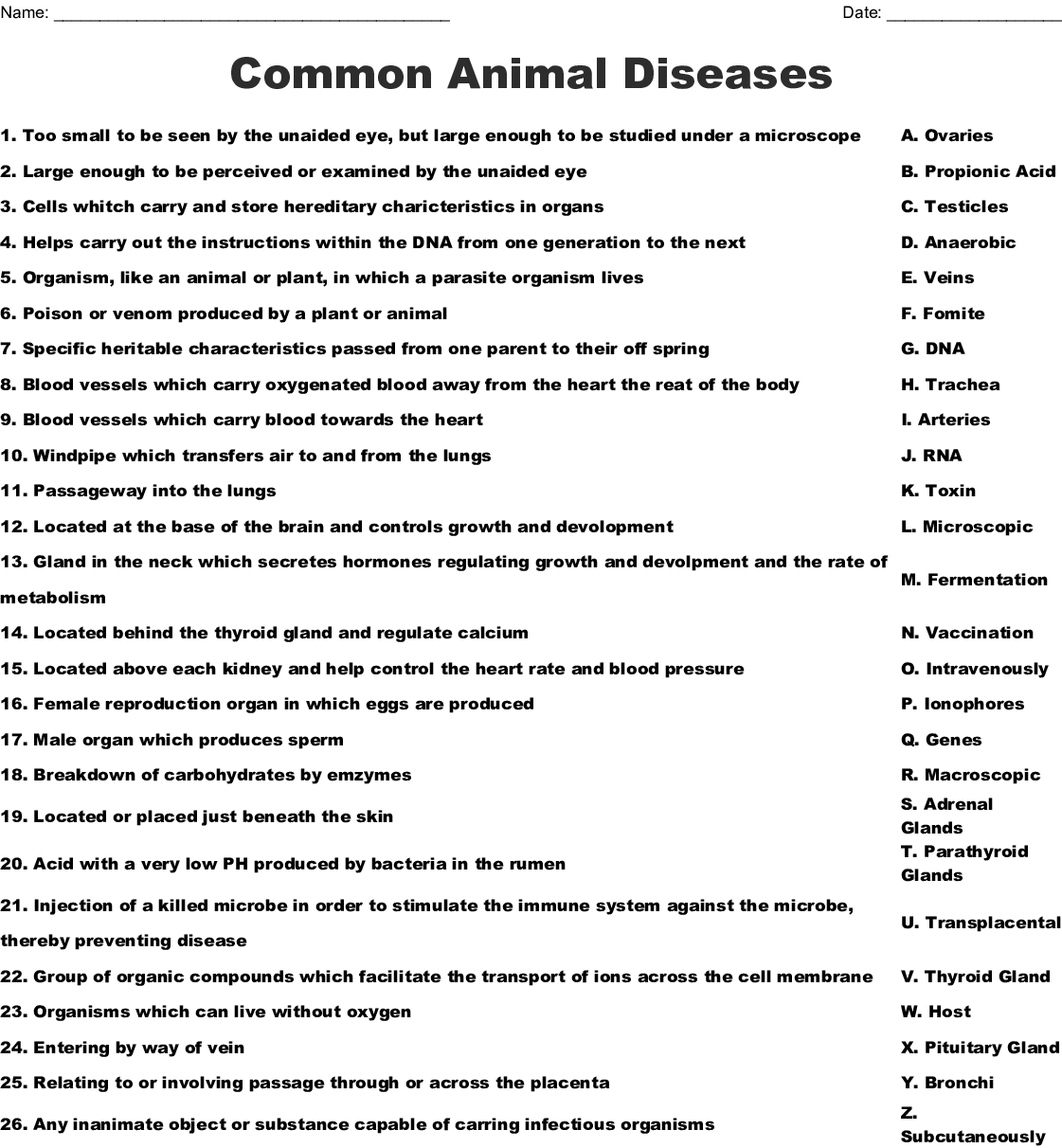 Common Animal Diseases Worksheet