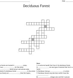 deciduous forest crossword [ 1121 x 1002 Pixel ]