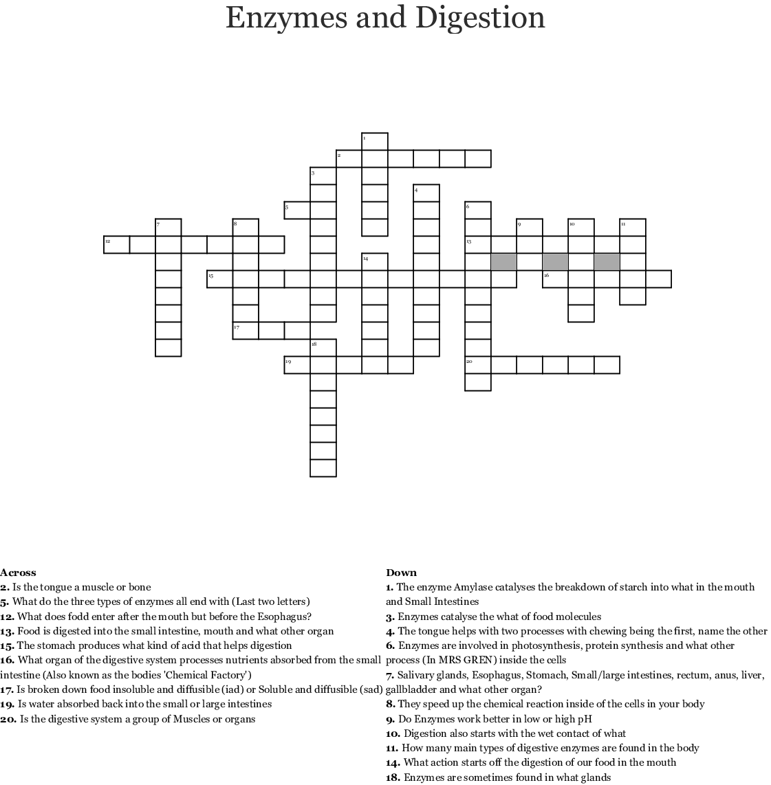 Crossword On Enzymes Answers
