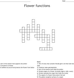 flower functions crossword [ 1121 x 1026 Pixel ]