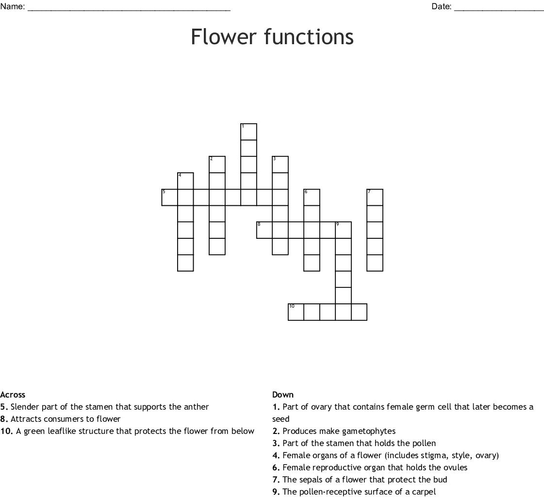 hight resolution of flower functions crossword