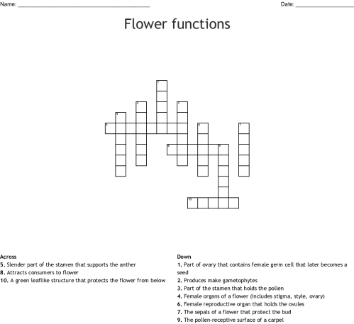 small resolution of flower functions crossword