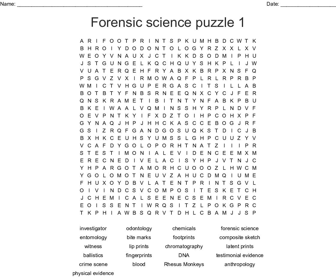 Forensic Science Fingerprints Worksheet