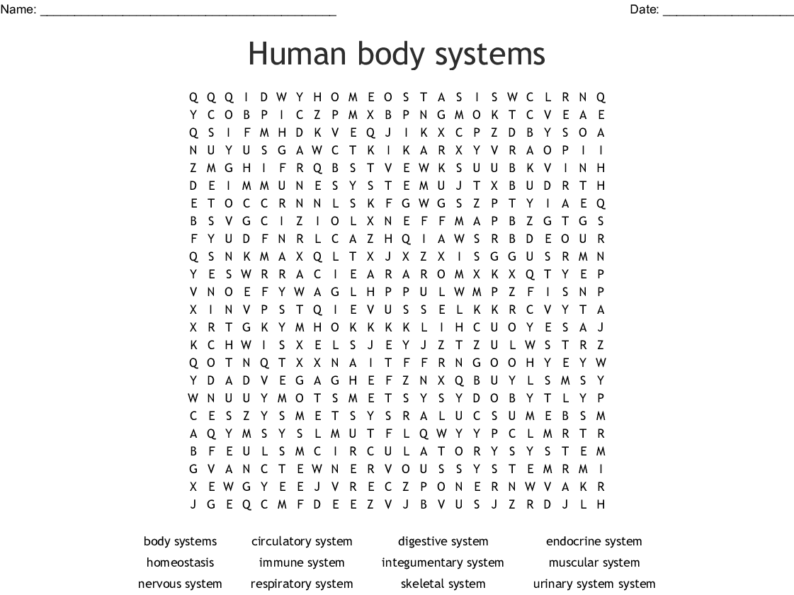 Human Body Systems Word Search