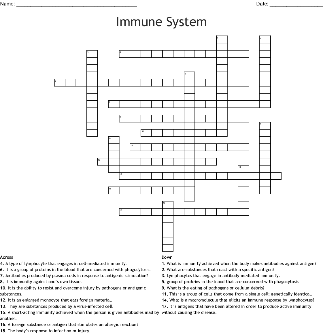 The Immune System Crossword