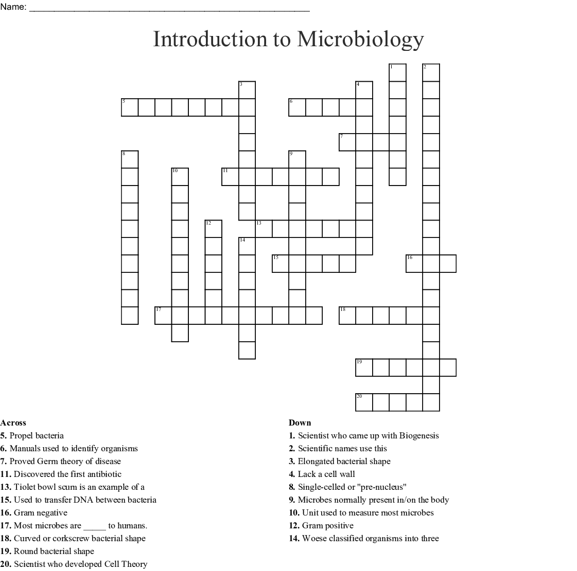 Introduction And Microscope Crossword Puzzle