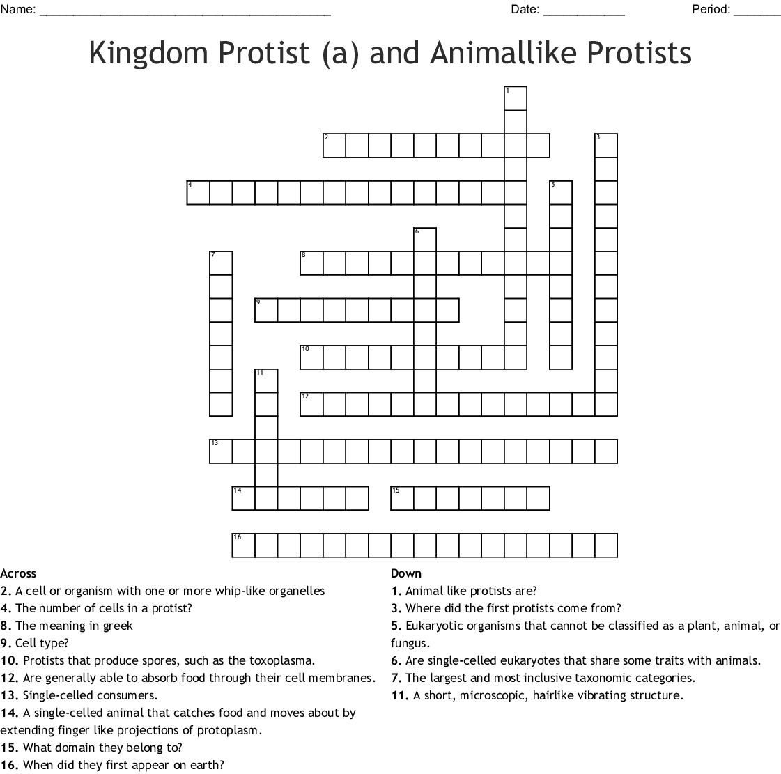 hight resolution of kingdom protist a and animallike protists crossword