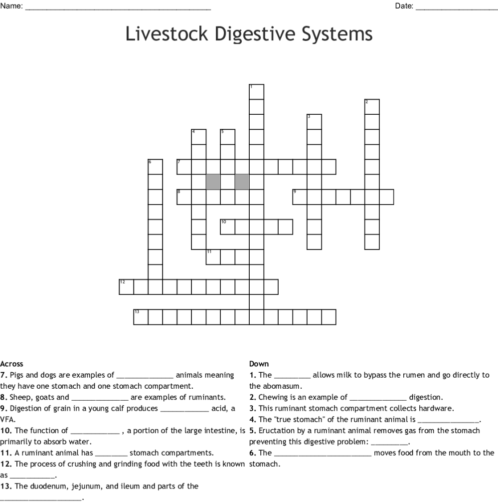 medium resolution of livestock digestive systems crossword