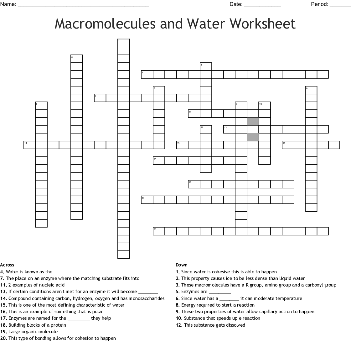Macromolecules And Water Worksheet Crossword