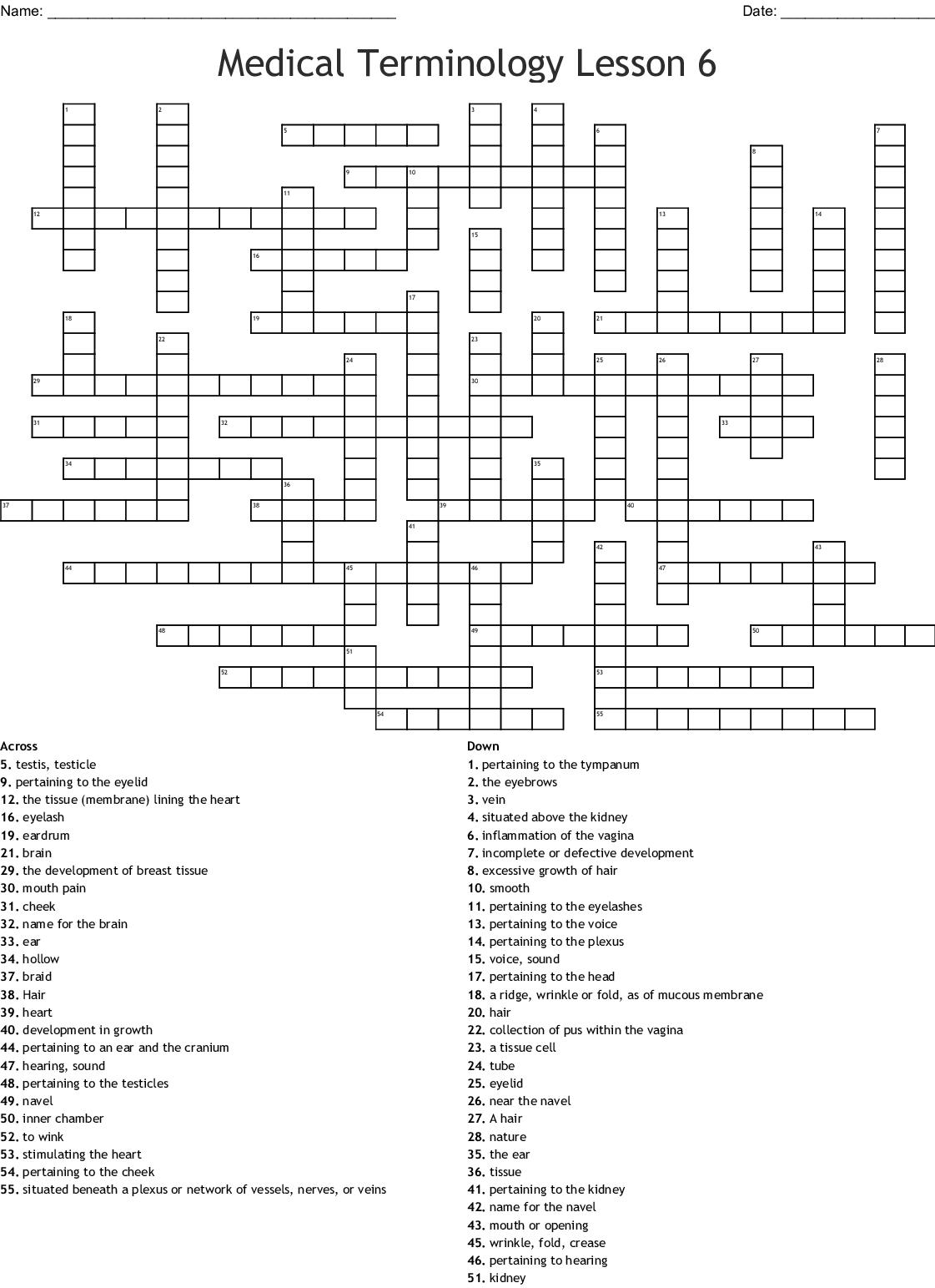 Medical Terminology Lesson 6 Worksheet