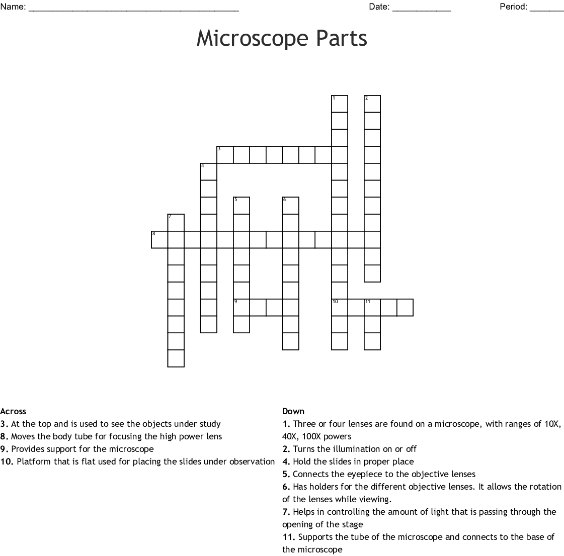 Compound Microscope Crossword Puzzle
