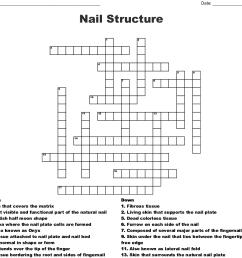 nail structure crossword [ 1121 x 1060 Pixel ]