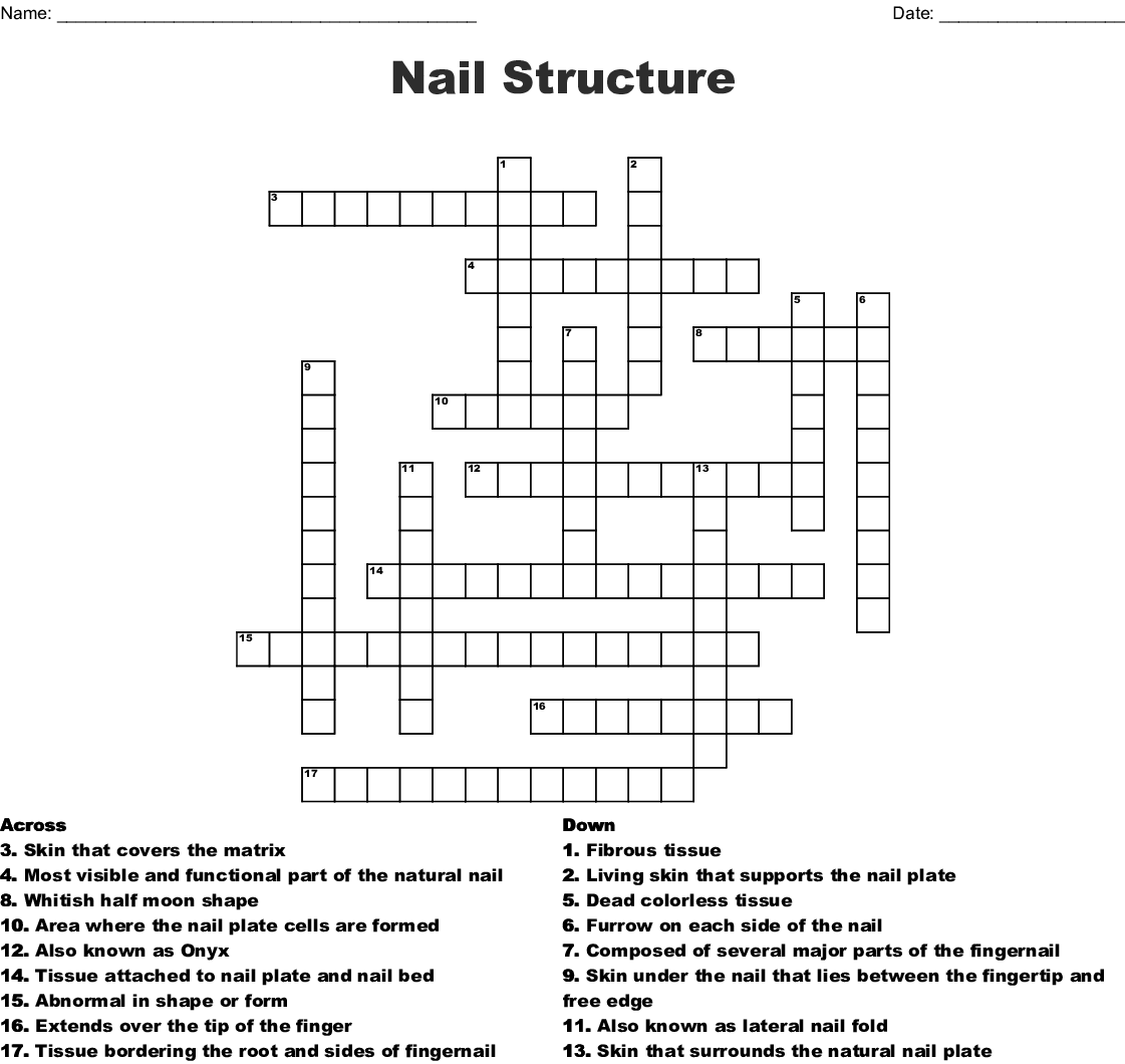 hight resolution of nail structure crossword