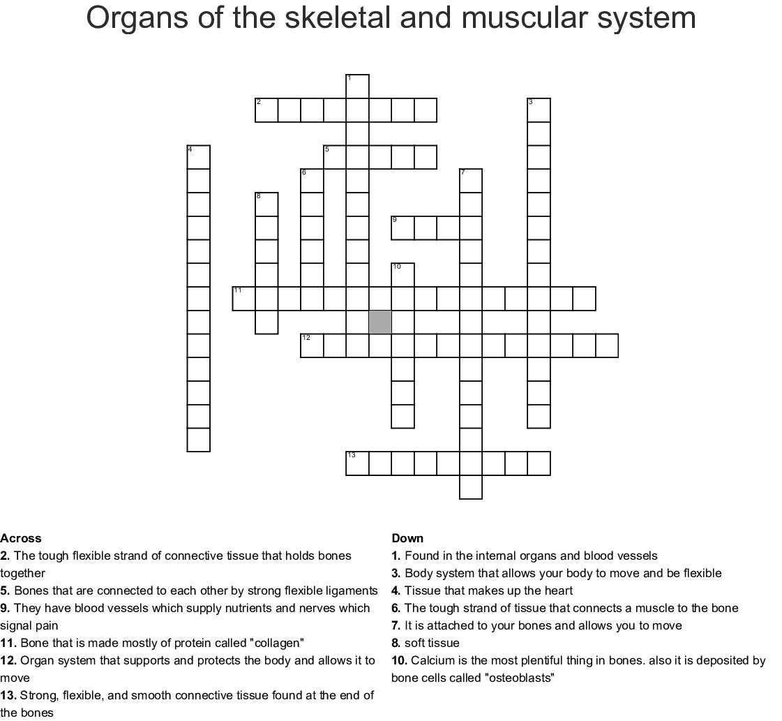 Musculoskeletal Crossword