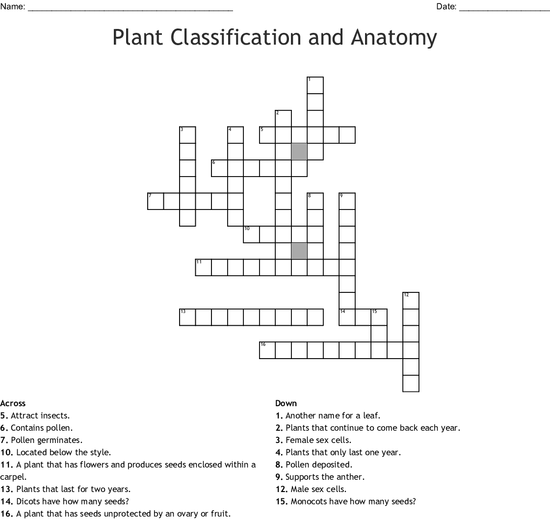 Types Of Plants Word Search