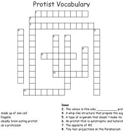 protist vocabulary crossword [ 1121 x 896 Pixel ]