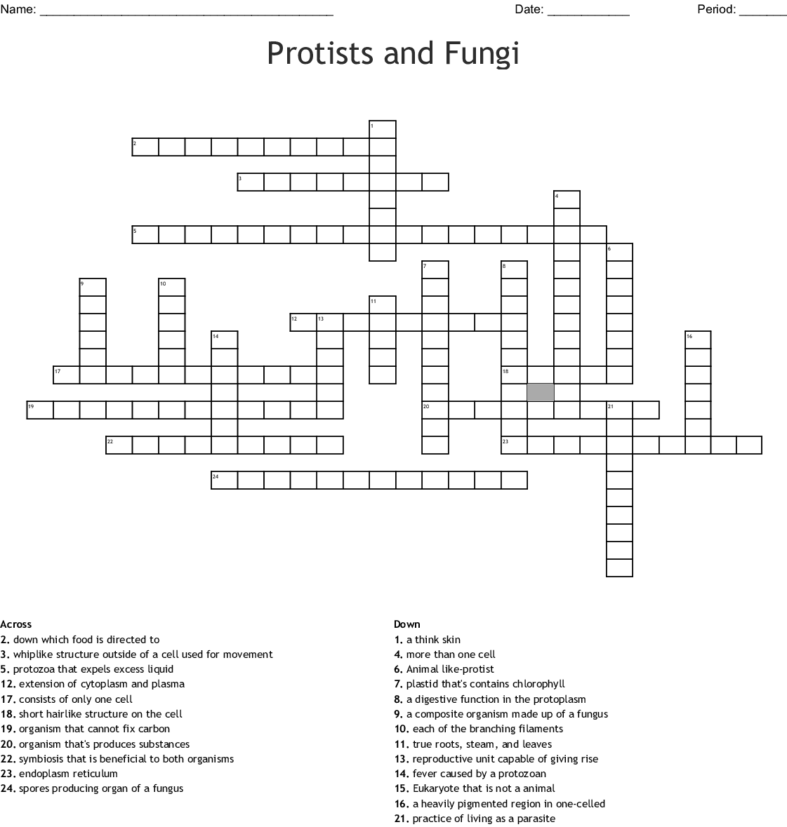 hight resolution of protists and fungi