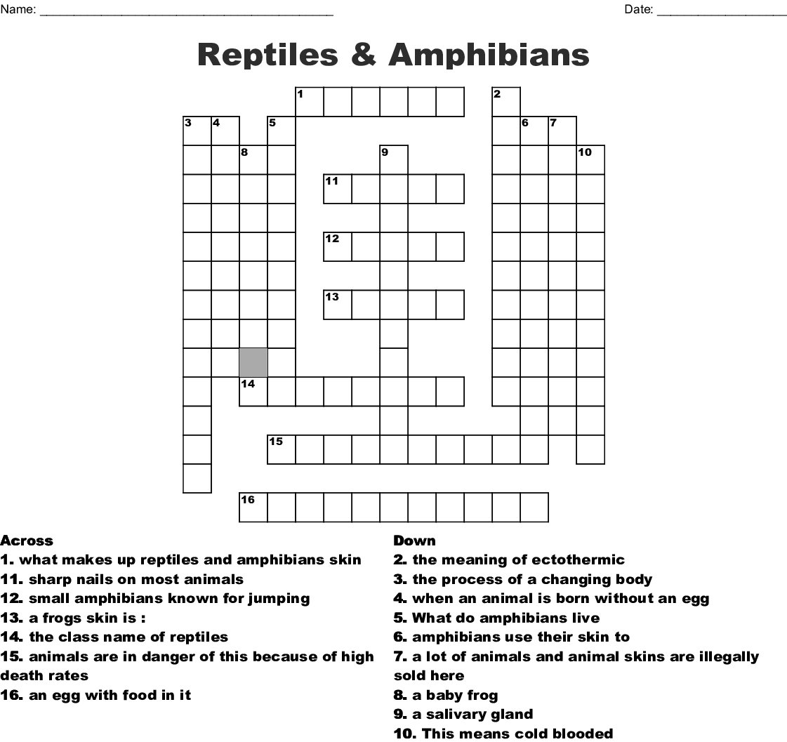 hight resolution of reptiles amphibians crossword