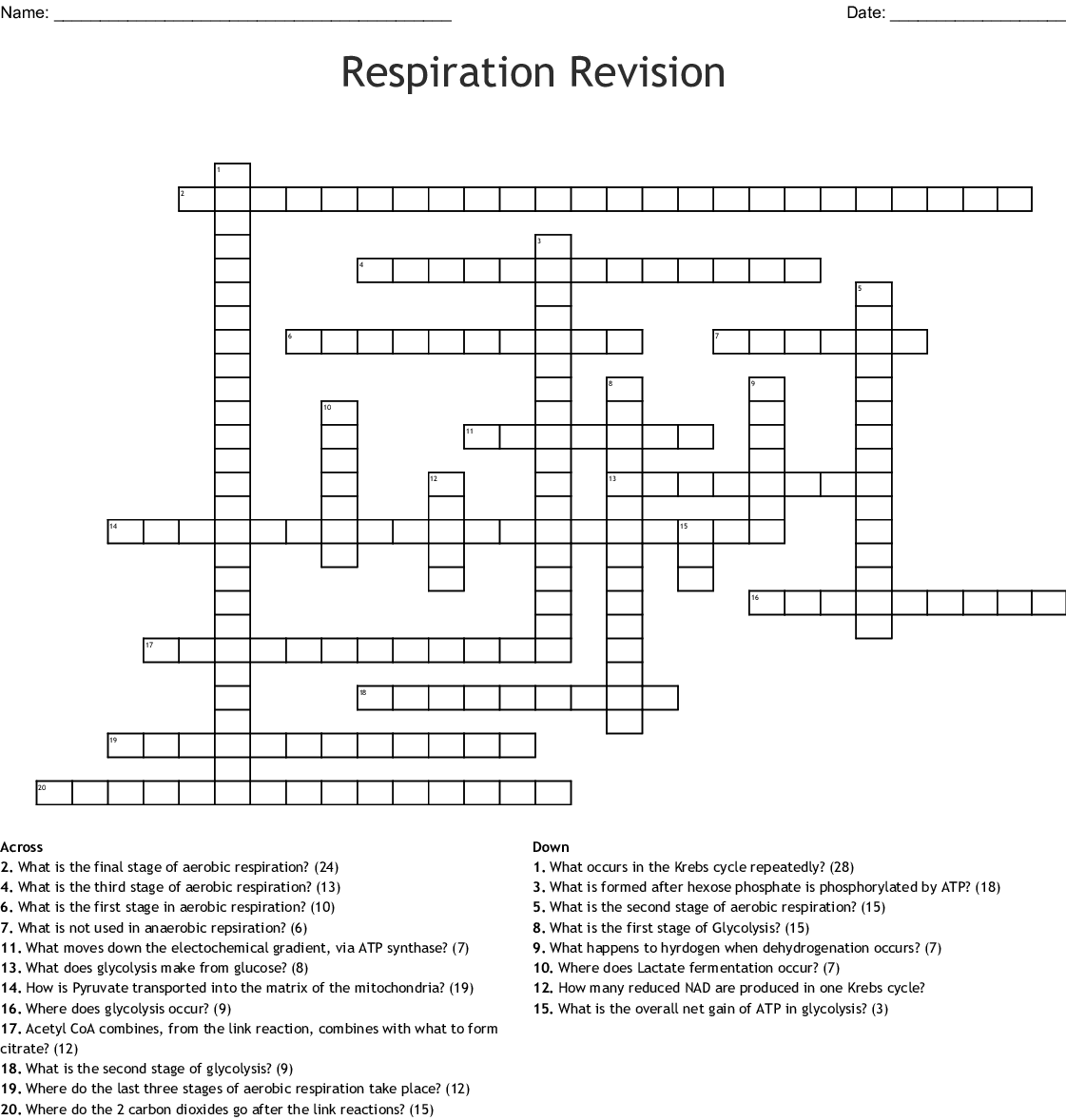 Cellular Respiration Crossword