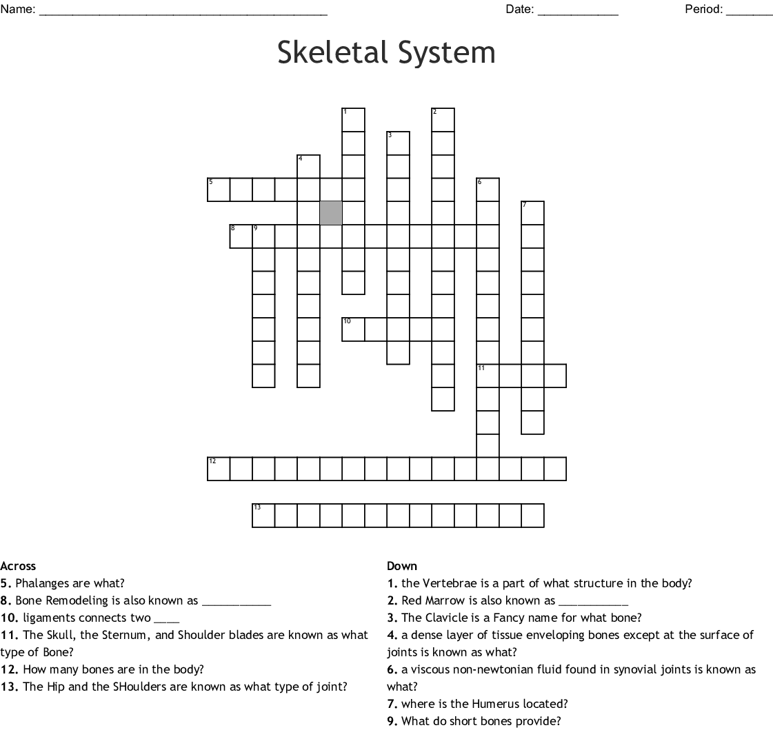 Skeletal System Crossword