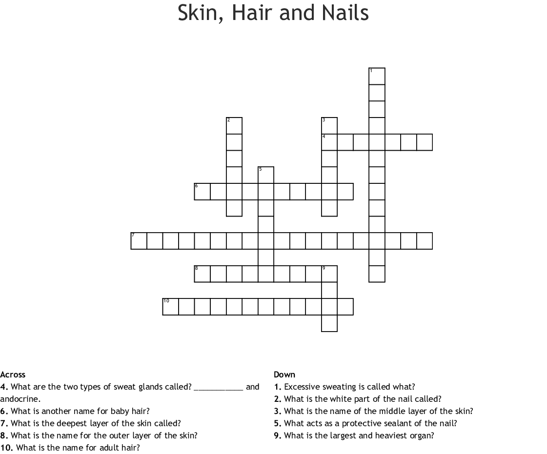 hight resolution of skin hair and nails crossword