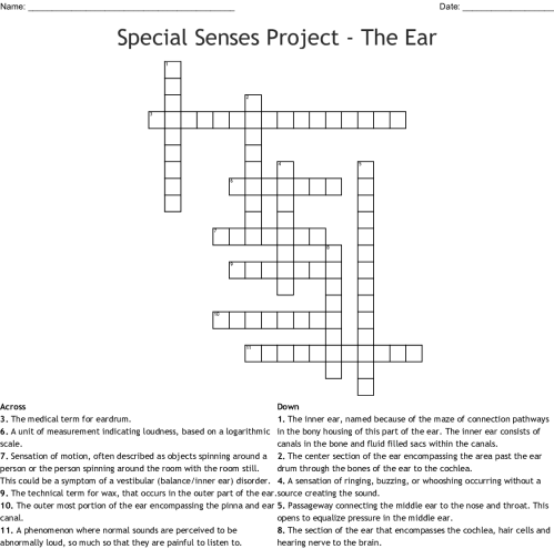 small resolution of special senses project the ear crossword