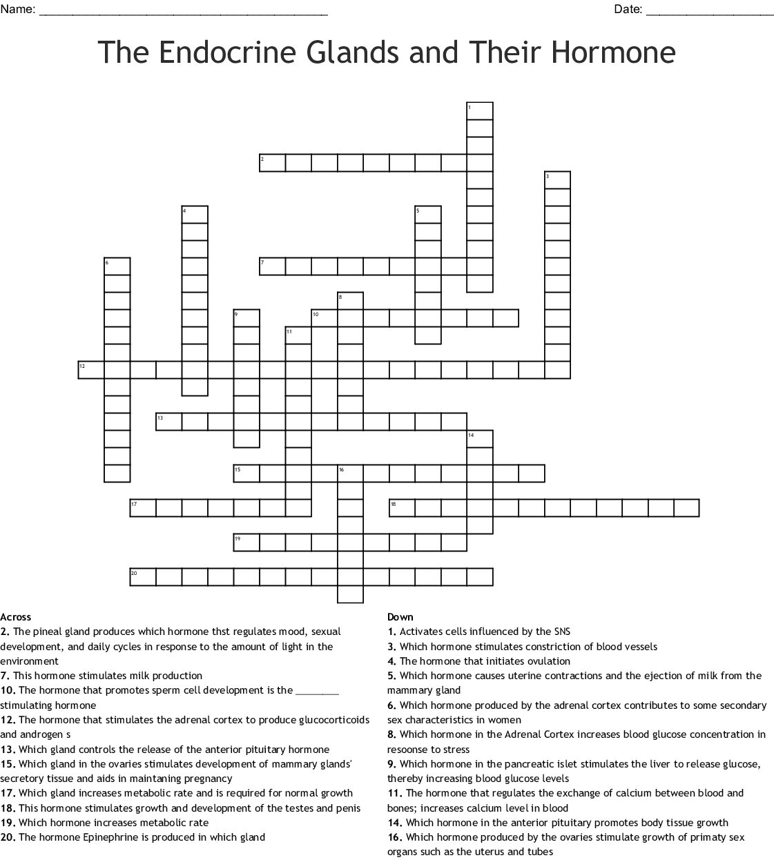 Crossword Endocrine System Word Search Answers
