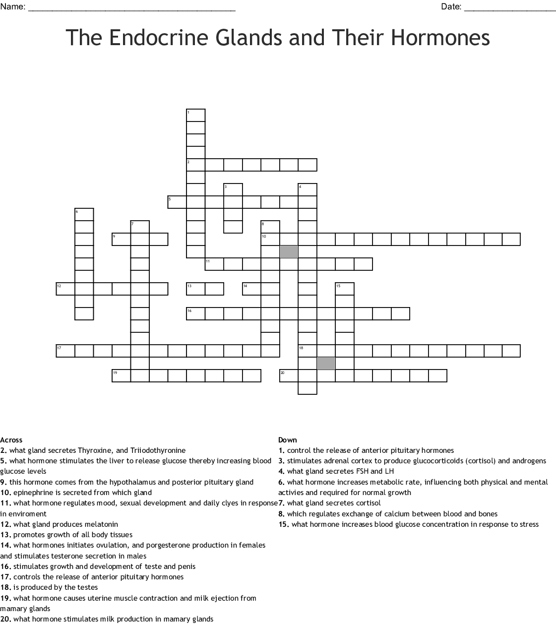 The Endocrine Glands And Their Hormones Crossword