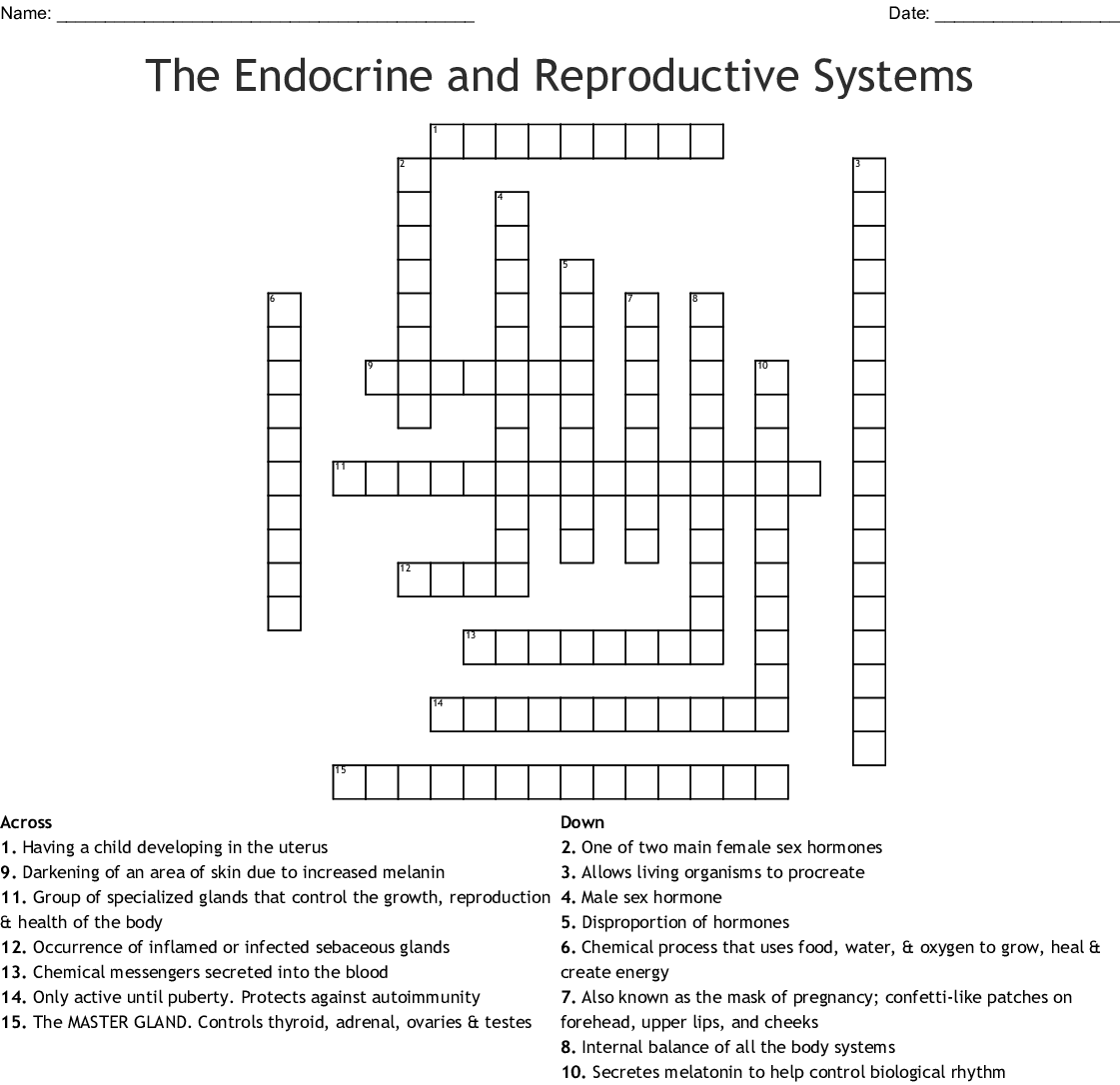The Endocrine And Reproductive Systems Crossword