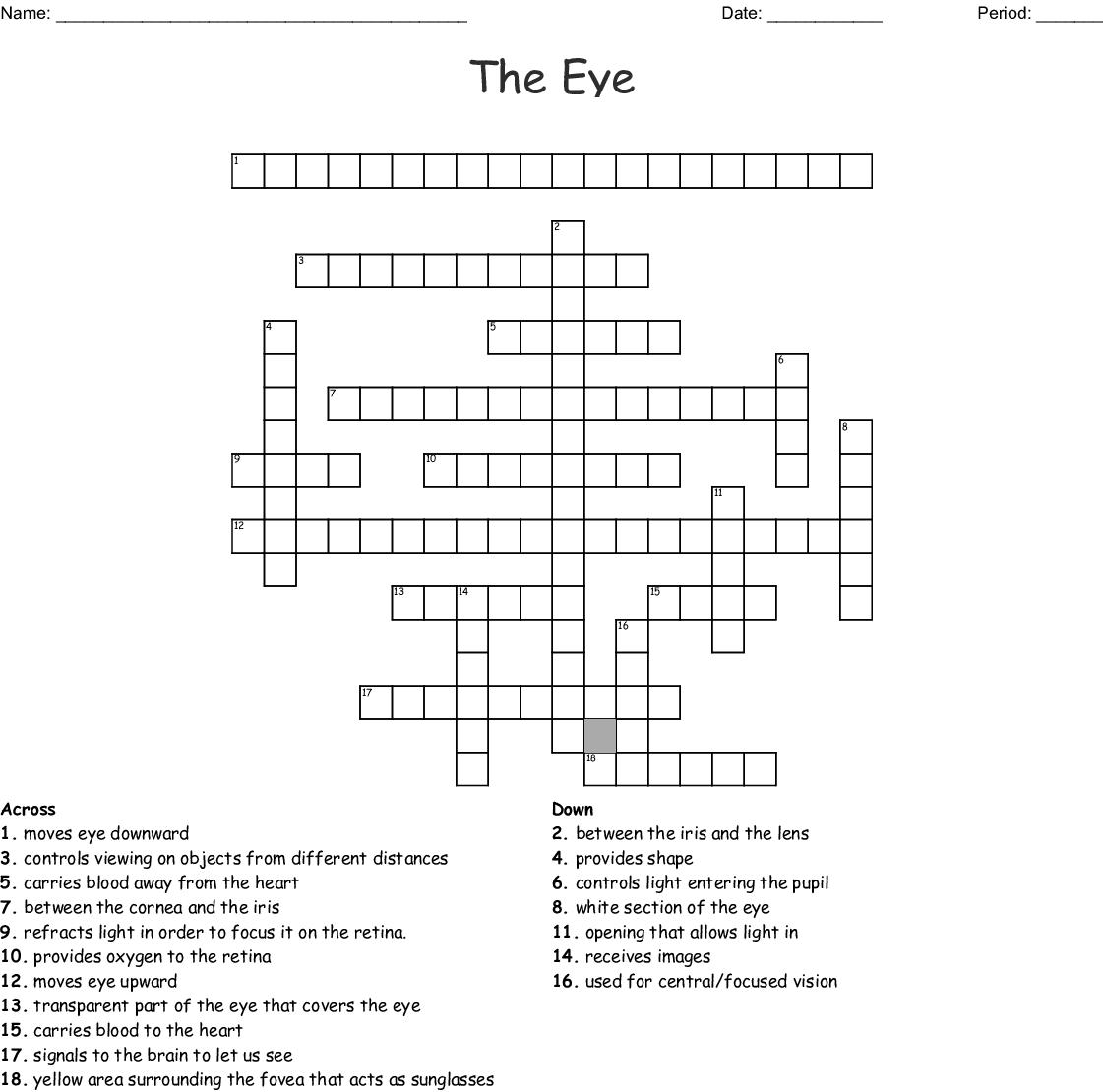 The Eye Vocabulary Crossword