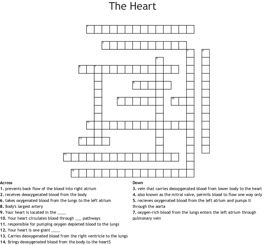 The Heart Crossword