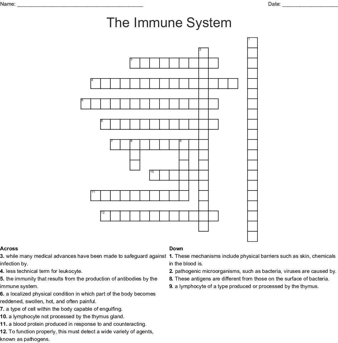 Immune System Worksheet Answer Key