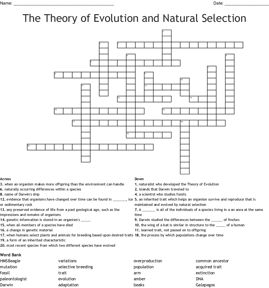 Evolution Crossword Puzzle Answer Key