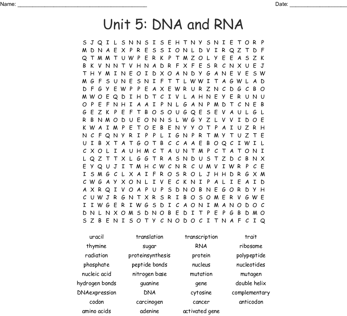 Unit 5 Dna And Rna Word Search