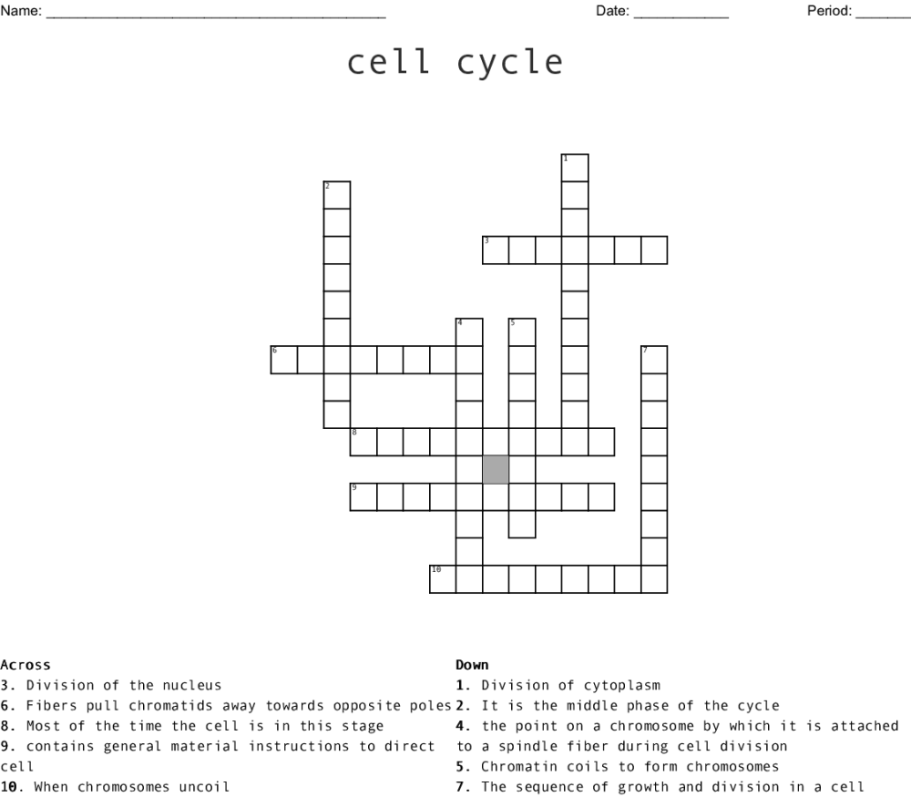 medium resolution of cell cycle crossword