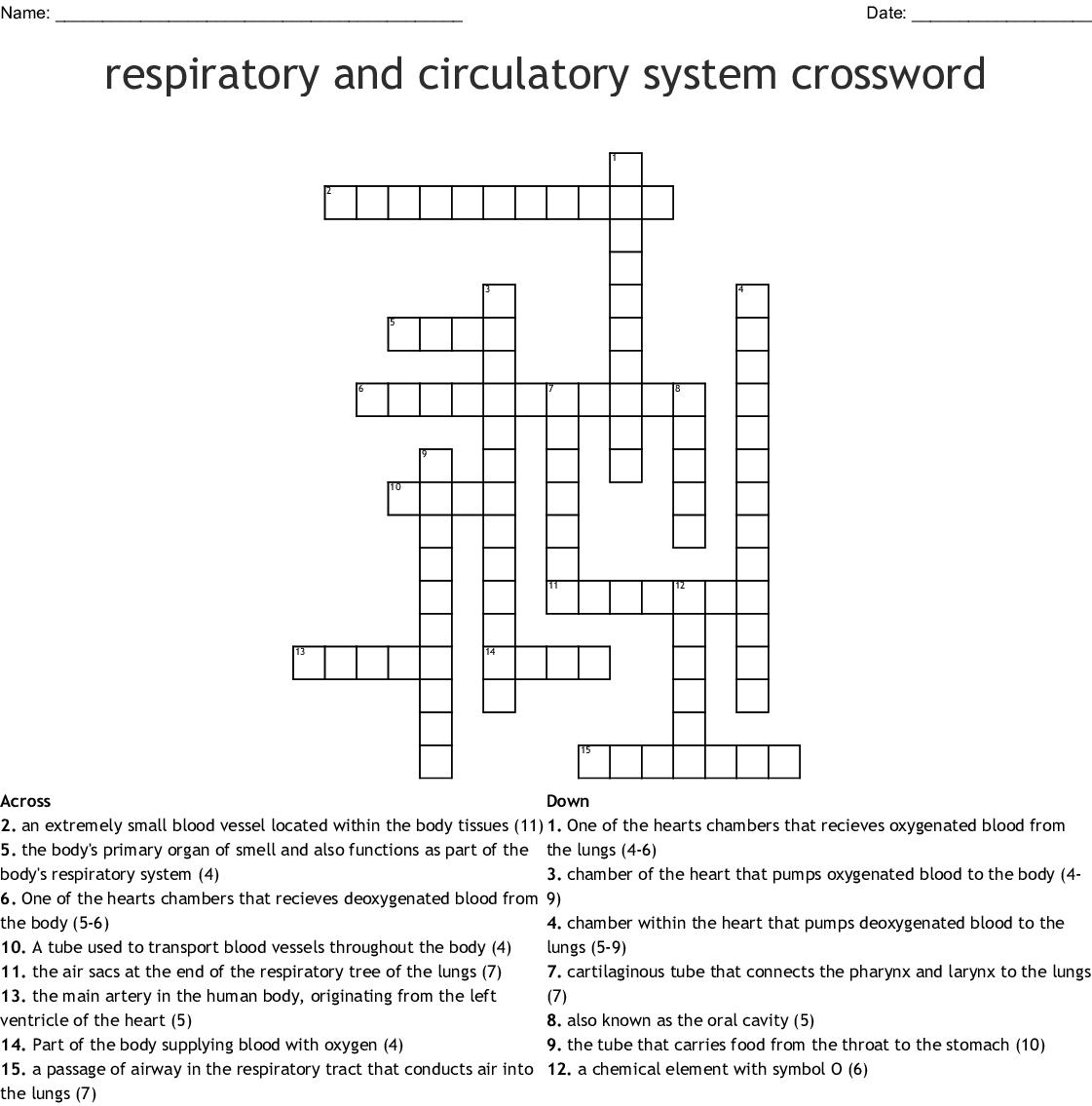 Crossword Respiratory System
