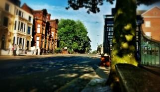 Roadside Daydream