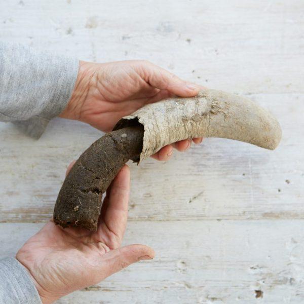 biodynamics-steiner