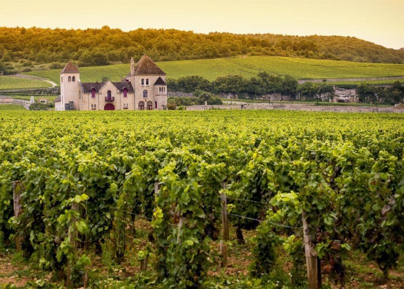 value-burgundy